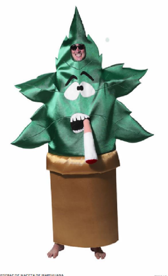 Marijuana costume
