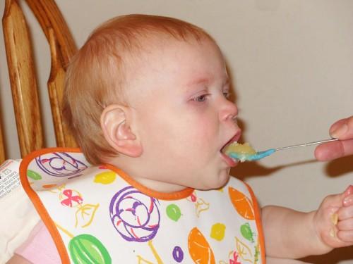 Se alimenta en exceso a los beb s mundo diversal for Caracol de jardin de que se alimenta