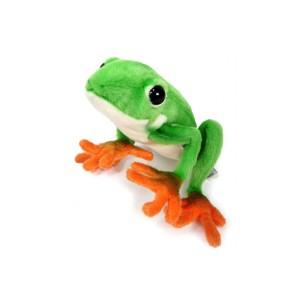 7674_rana verde-acuaticos